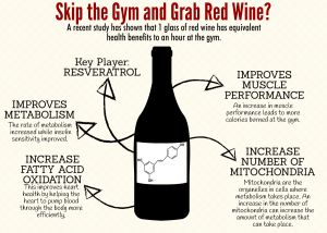 Skip the Gym and Grab the Red Wine?