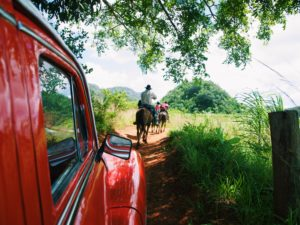 What You Don't Know About Cuban Cigars – A Day Trip to Viñales, Cuba